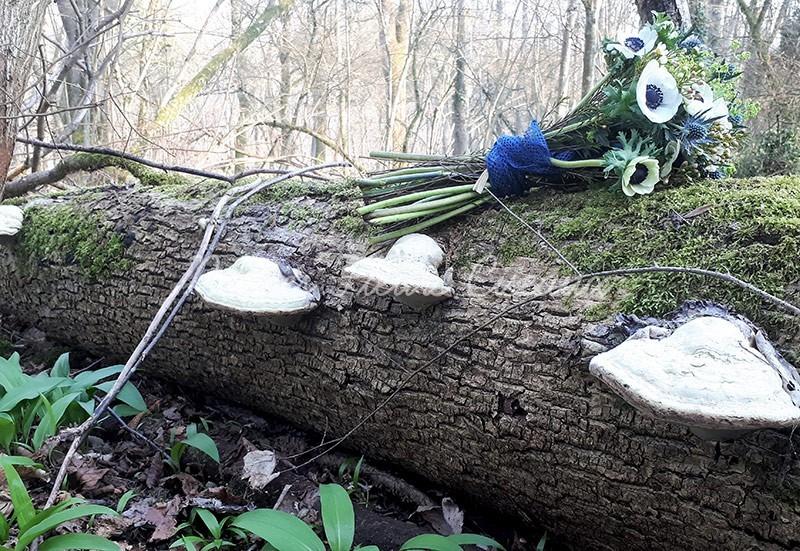 Bouquet de fleurs pour le deuil posé sur un tronc couhé dans la forêt