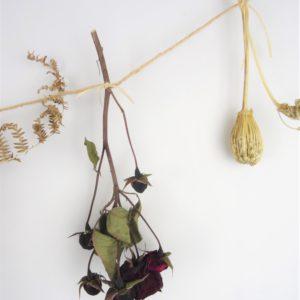 Guirlande de fleurs locales séchées.